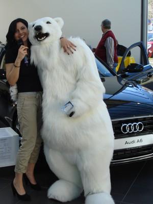 Audi A6, Eiszeitquell